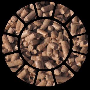 greener-group-biomass-17
